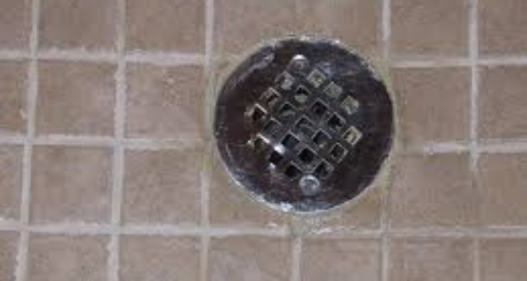 Shower Drain Back-up